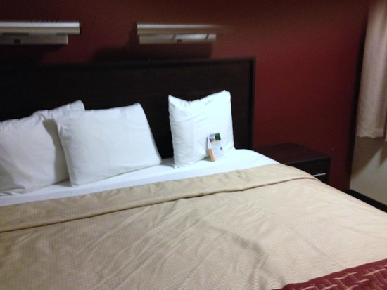 Red Roof PLUS+ Washington DC - Manassas: the bed