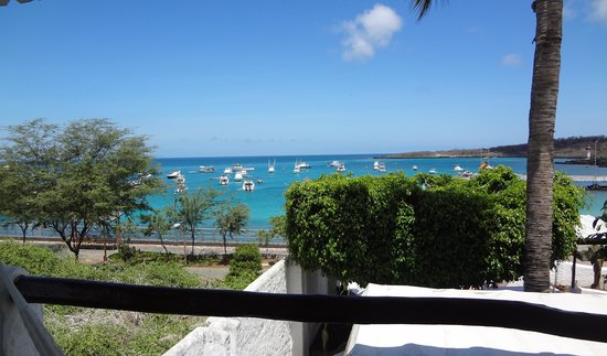Casa Opuntia Galapagos: view from the room