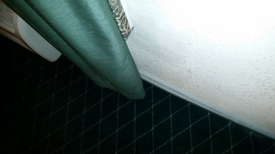 Ramada Columbia Missouri - carpet pulling away from walls