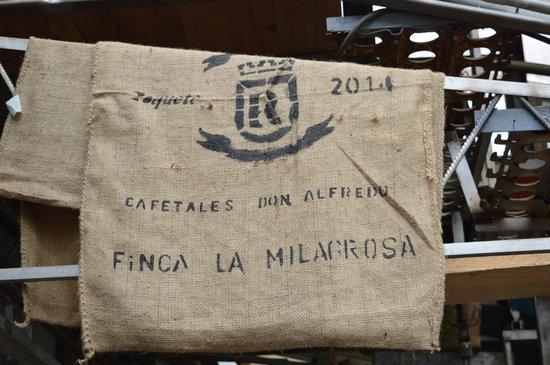 Mucho Gusto Panama Day Tours: Coffee tour