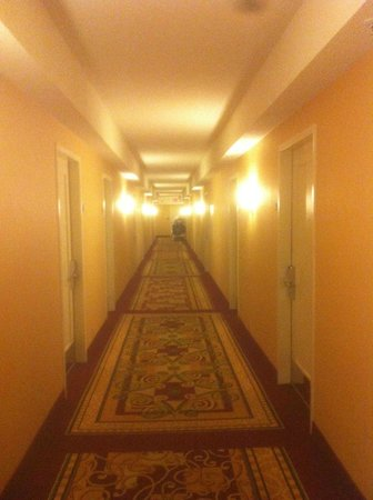 Crystal City Marriott at Reagan National Airport : Corridor