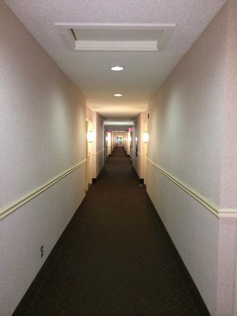 Econo Lodge Airport: couloir