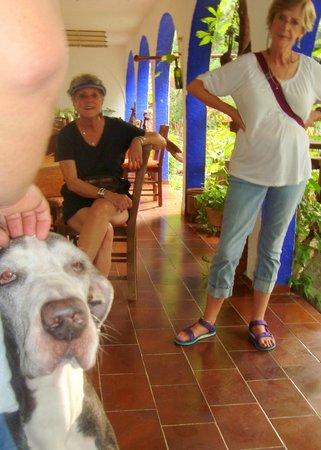 Amar Inn B&B: My friends wait their turns to pet Luis' giant old dog