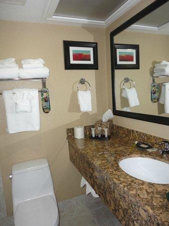 Best Western Plus Casino Royale: Bathroom view