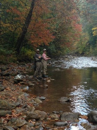 Brown Trout Fly Fishing - Private Trips