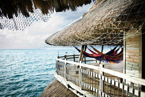Isla Tintipán, Colombia: Hammock Balcony