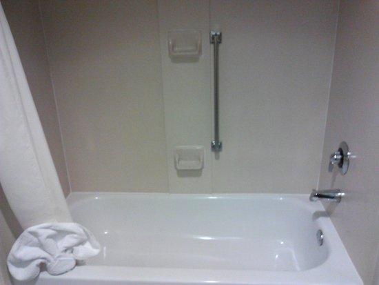 هامبتون إن آند سويتس أتلانتا إربورت نورث: Bathroom 3