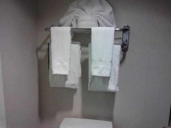 هامبتون إن آند سويتس أتلانتا إربورت نورث: Bathroom 1