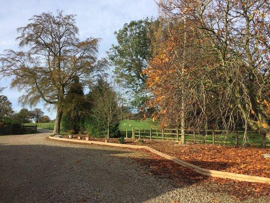 St George's Court : Driveway