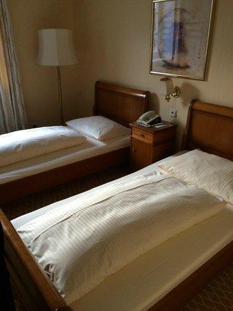 Hotel Ludwig im Park: Einzelzimmer