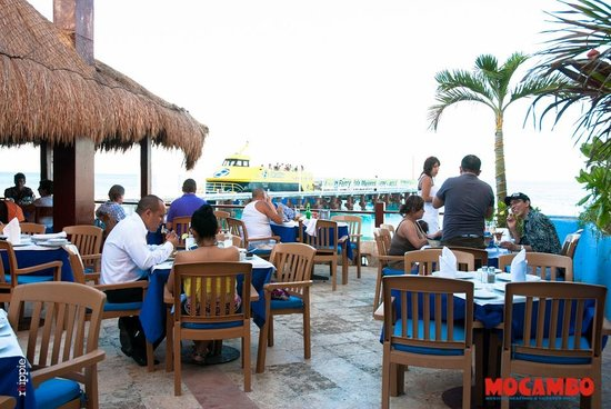 Mocambo Cancun Restaurant Reviews Phone Number Photos Tripadvisor