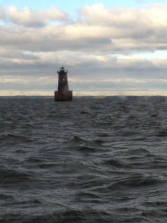 Chesapeake Bay Sportfishing