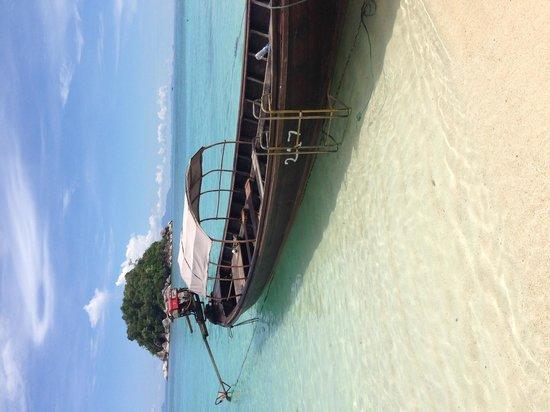 Idyllic Concept Resort : sun rise beach