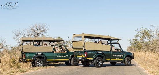 Nhongo Safaris - Day Tours: Open Safari Vehicles