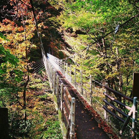 Daisen Fall Suspension Bridge