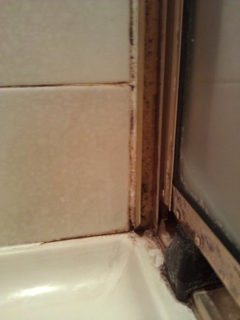 Rydges Hotel Hobart: After priority clean - corner of shower recess and the shower door.