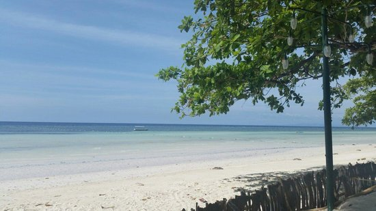 Beach Front View Picture Of Dubay Panglao Beachfront