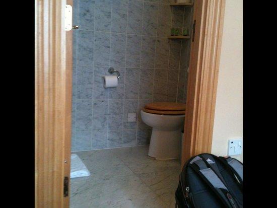 Troy Hotel : Entrance to bathroom