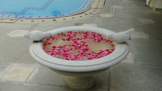 Hotel Mahendra Prakash: Decoration by the pool