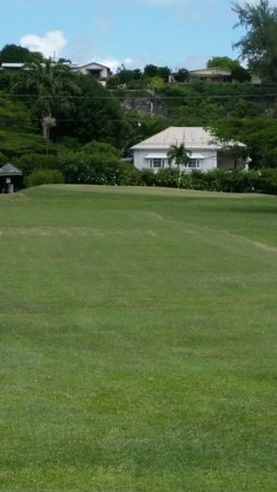 Rockley Golf Club: 5th/14th green looking back from the 6th/15th.