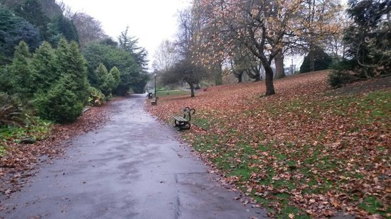 Valley Gardens: Autumnal walk