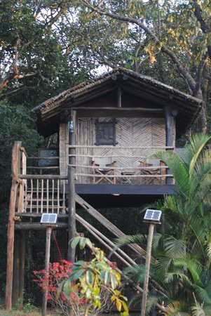 The Hermitage Guesthouse : The Machaan at The Hermitage