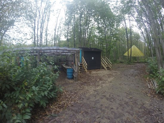 Badgells Wood Camping: showers sinkk & toilets