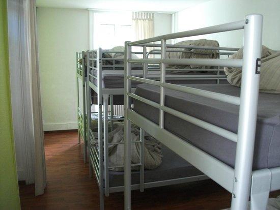 Lion Lodge Lucerne : Dorm room