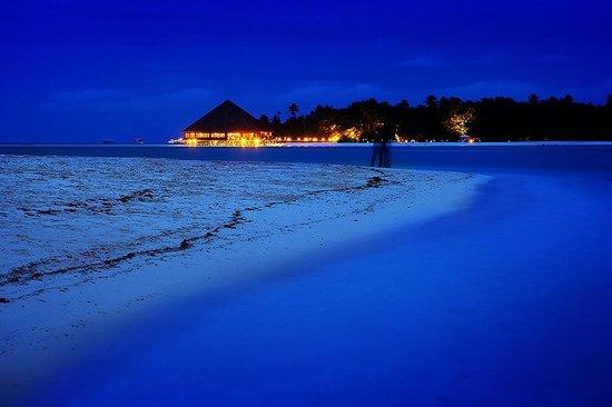 Bibee Maldives: Sorrounding