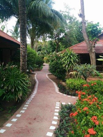 PGS Hotel Sandy Resort : Территория отеля