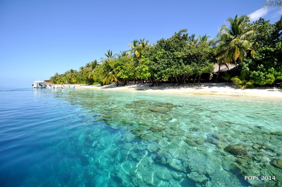 Vilamendhoo Island Resort & Spa: out of island view