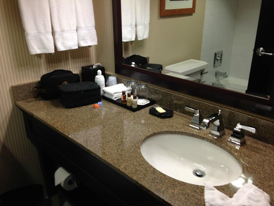 Sheraton Roanoke Hotel and Conference Center: Bathroom - updated and clean