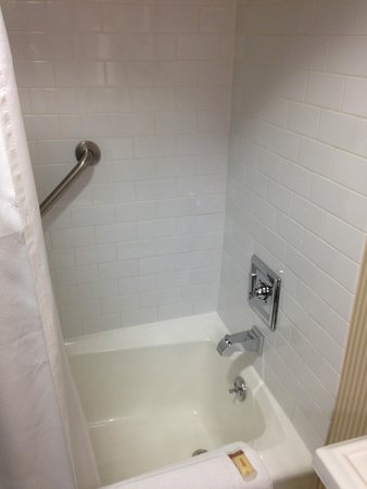 Sheraton Roanoke Hotel and Conference Center: Bathroom - updated shower