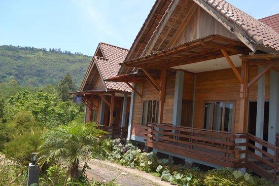 Istana Petani Homestay