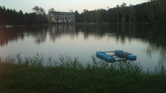 Hotel Miramonti: uno scorcio del laghetto