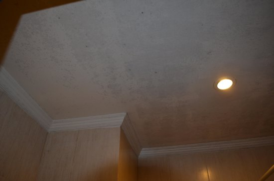 Grand Thekkady: Mouldy bathroom ceiling