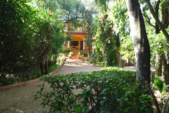 The Flycatcher Inn B&B Boutique Hotel Uxmal: bungalow dans la végétation tropicale