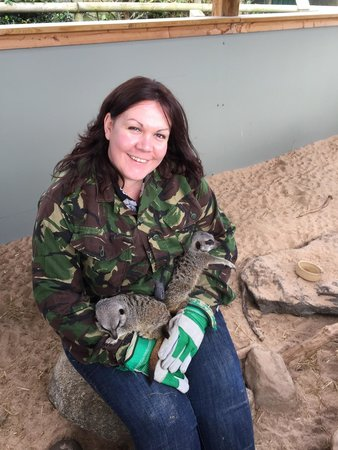 Vale Royal Falconry Centre: Cuddles!