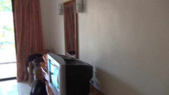 Han Rainforest Resort : Old TV