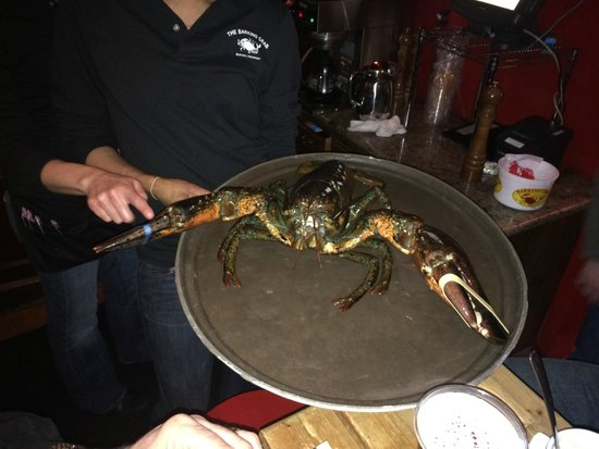 ‪‪Barking Crab‬: Largest Lobster of the Night‬