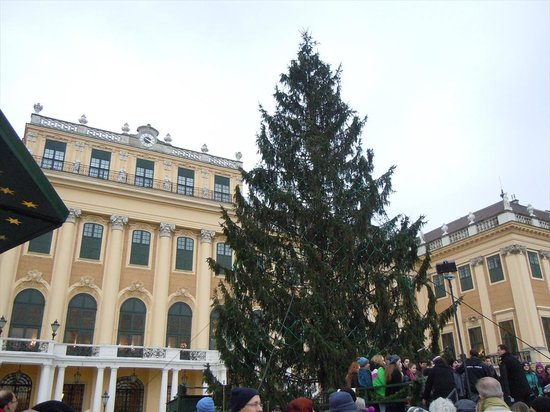 Schoenbrunn Palace Christmas Market : 外壁の黄色とのコントラスト