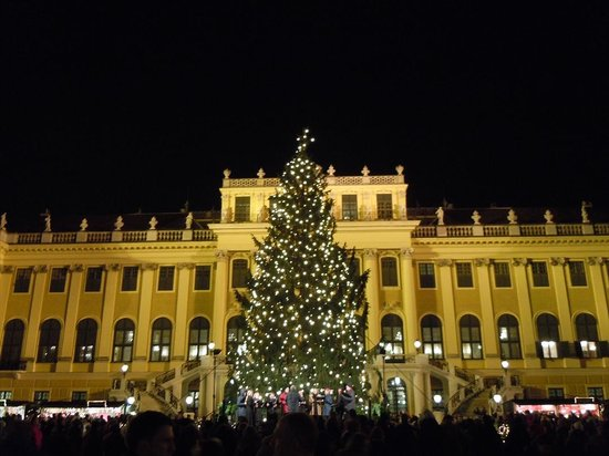 Schoenbrunn Palace Christmas Market : 夜はライトアップ、うっとりするほど美しい