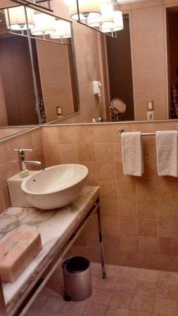 Hotel Camino Real Santa Fe México: Baño con secador de pelo, espejo móvil con aumento y teléfono. La presión de agua podría ser mej