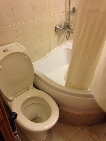 Arabian Dreams Hotel Apartments: Biggest bathroom