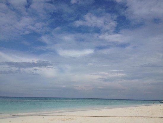 SeaStar Andaman - Day Tours: Tiffany blue water !!