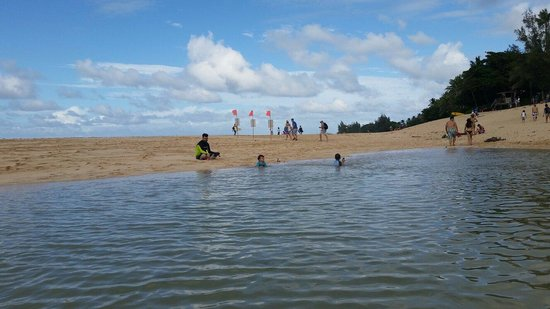 Ehukai Beach Park: Overflow pond from high surf going over the dunes