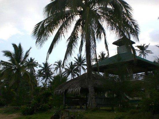 Isla Polillo Beach Resort: 16