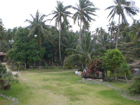 Landscape - Isla Polillo Beach Resort: 1