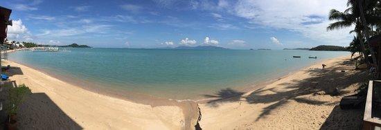 L' Hacienda: Vue panoramique de la plage juste au pied de l hôtel