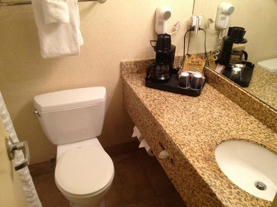 Comfort Inn Downtown: bathroom